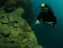Chamagnieu Plongee - aquatique (4)